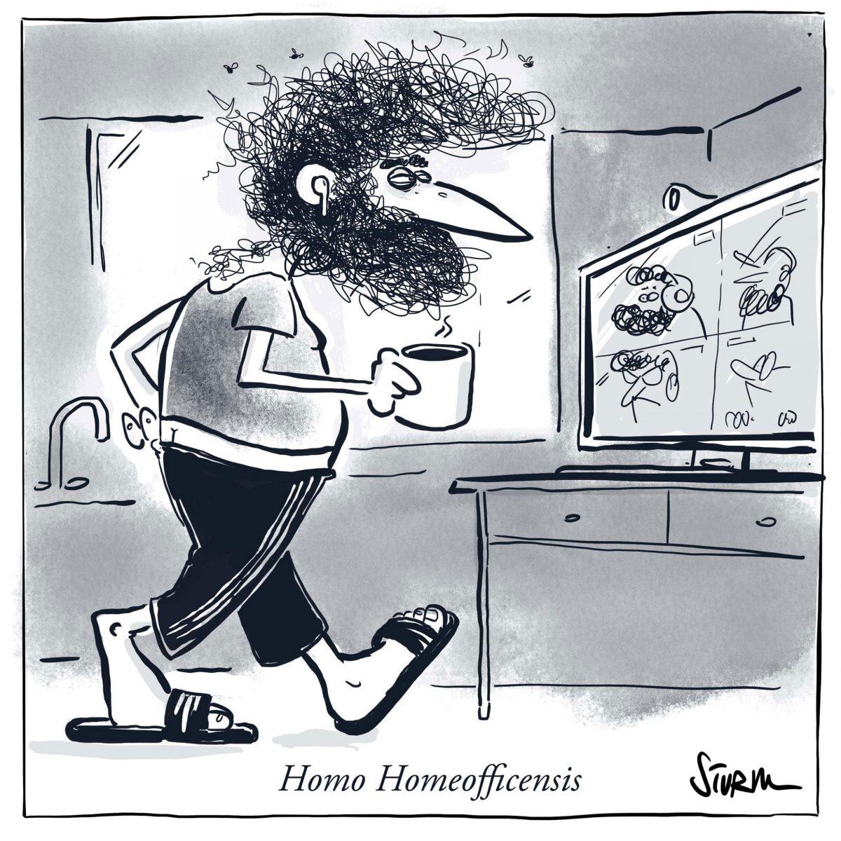 Im Frühjahr 2020 entwickelte sich der Homo Homeofficensis als nächster Verwandter des Homo Sapiens. Cartoon von Philipp Sturm